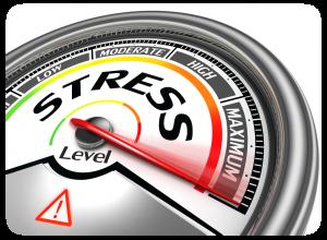 stress_tr